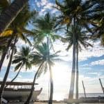 Lonely beach - Caribian summer — Stock Photo #13475216
