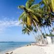 Lonely beach - Caribian summer — Stock Photo