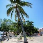 Caribian summer — Stock Photo