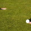 Stock Photo: Golf putting green
