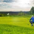 Golf putting green — Stock Photo #18948519