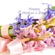 Mother's Day Concept — Stock Photo #24082003