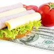 Expensive sandwich — Foto Stock