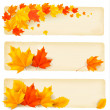 Three autumn banners with colorful leaves Vector — Stock Vector #12426919