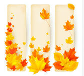 Three autumn banners with colorful leaves — Vector de stock