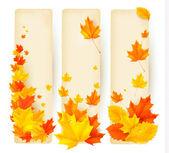 Tre banner autunnale con foglie colorate — Vettoriale Stock