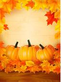 Citrouilles sur fond en bois avec des feuilles. automne fond. vector. — Vecteur