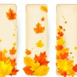 Three autumn banners with colorful leaves in golden frames. Vector. — Stock Vector #13086038