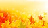 Automne fond avec des feuilles jaunes et de la main. illustration vectorielle. — Vecteur
