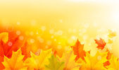 Autumn background with yellow leaves and hand. Vector illustration. — Stockvector
