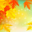 Autumn background with leaves. Back to school. Vector illustration. — Stock Vector #13263271