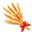Ears of wheat with red bow. Vector. — Stock Vector #13263314
