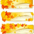 Stock Vector: Three autumn banners with colorful leaves in golden frames. Vector.