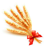 Ears of wheat with red bow. Vector. — Stock Vector
