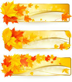 Three autumn banners with colorful leaves in golden frames. Vector. — Stock Vector