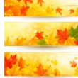 Three autumn banners with colorful leaves in golden frames. Vector illustration. — Stock Vector