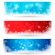 Set of winter christmas banners. Vector illustration — Stock Vector #14136309