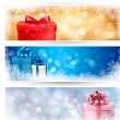 Set of winter christmas banners illustration — Stock Vector #14432297