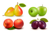 Set of fresh fruit. Vector — Stock Vector
