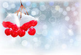 Holiday background with Christmas branch with red berries. Vecto — ストックベクタ
