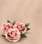 Retro background with beautiful pink roses with buds. Vector ill — Stock Vector