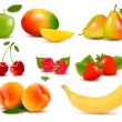 Big set of different fresh fruit and berries. Vector. — Stock Vector #20154649