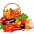 Background with fresh vegetables in basket. Healthy Food. Vector - Stock Vector