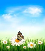 Nature background with green grass and flowers witn butterfly. V — Stock Vector