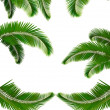 Royalty-Free Stock Vector Image: Set of backgrounds with palm leaves. Vector illustration