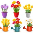Stock Vector: Collection of spring and summer colorful flowers in pots and wat
