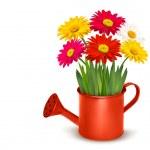 Fresh summer flowers in orange watering can. Vector illustration — Stock Vector #26335529