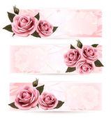Uppsättning holiday banners med rosa vackra rosor. vektor — Stockvektor