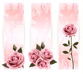 Three holiday banners with pink beautiful roses. Vector — Stok Vektör