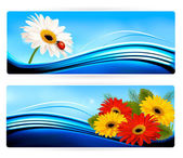 Nature banners with color flowers. Vector. — Stock Vector