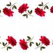 Holiday background with red beautiful roses. Vector — Stock Vector