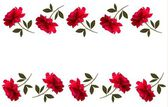 Holiday background with red beautiful roses. Vector — Vector de stock