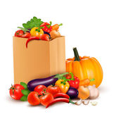 Background with fresh vegetables in paper bag. Healthy Food. Vec — Stock Vector