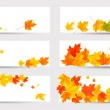 Stock Vector: Set of autumn banners with colorful leaves. Back to school. Vect