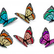 Set of realistic colorful butterflies. Vector — Image vectorielle