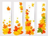 Set of autumn banners with colorful leaves. Back to school. Vect — Stock Vector