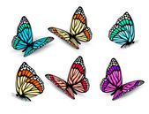 Set of realistic colorful butterflies. Vector — Stock Vector