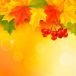 Autumn background with leaves and rowan. Back to school. Vector — Stock Vector