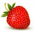 Strawberry. Vector. — Stock Vector