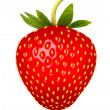 Strawberry. Vector. — Stock Vector #29811383