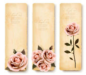Three retro holiday banners with pink roses. Vector — Stock Vector