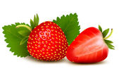 Two strawberries with leaves . Vector. — Stock Vector