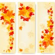 Three autumn backgrounds with colorful leaves. Back to school. V — Stock Vector