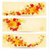 Tre höst bakgrunder med färgglada löv. tillbaka till skolan. v — Stockvektor