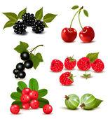 Grande grupo de cerejas e frutas frescas. ilustração vetorial — Vetor de Stock