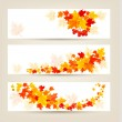 Three autumn banners with colorful leaves Vector  — Stock Vector